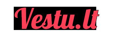 VESTU.LT - Renginių vedėjai ir renginių organizavimas